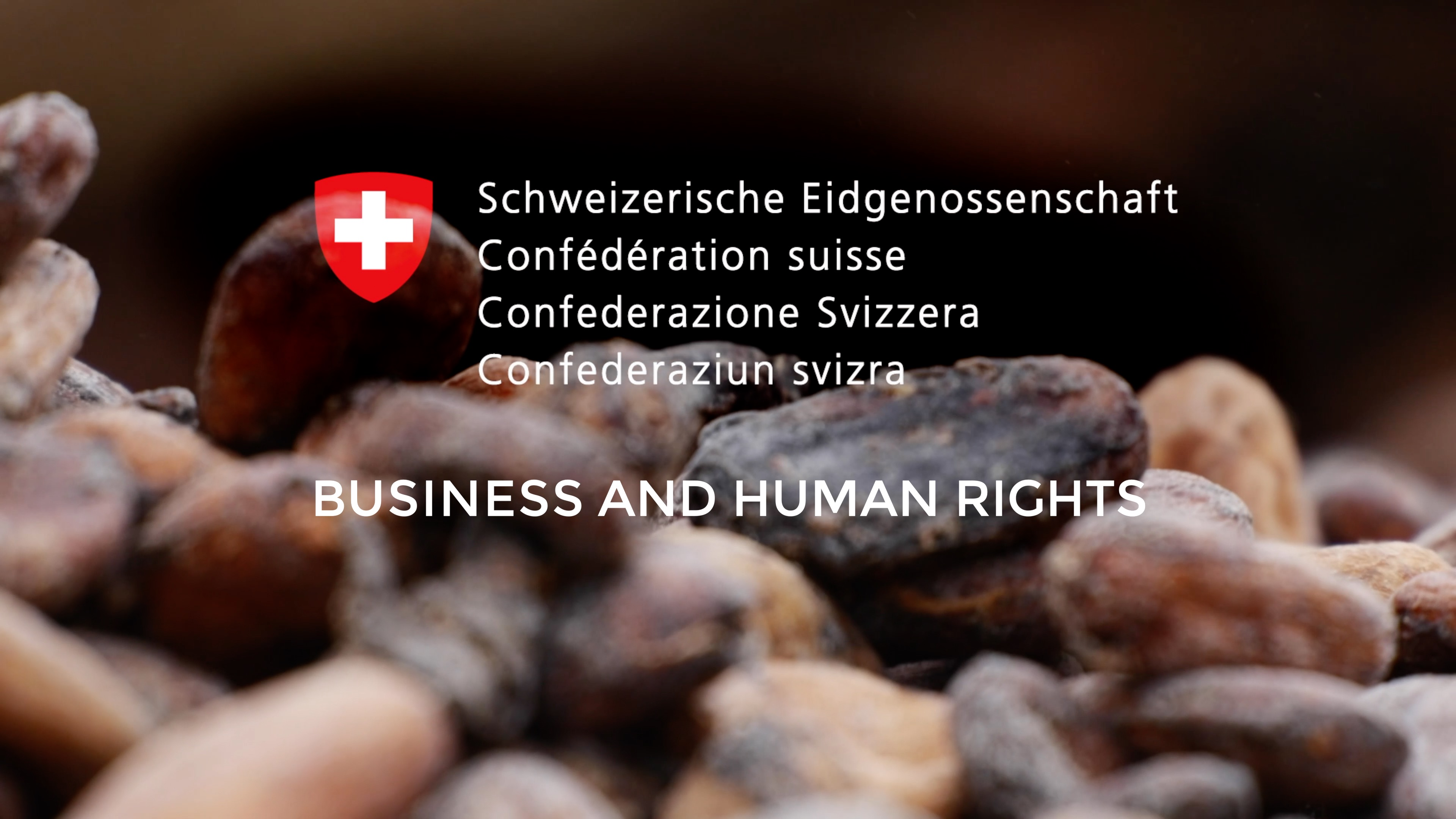 Video BusinessandHumanrights